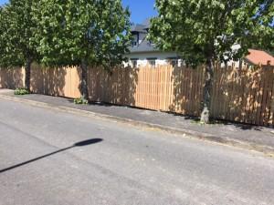 clôture lames différentes hauteurs douglas