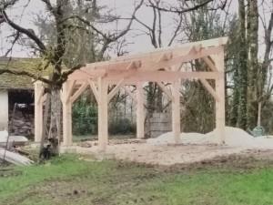 structure abri 1 pan en douglas
